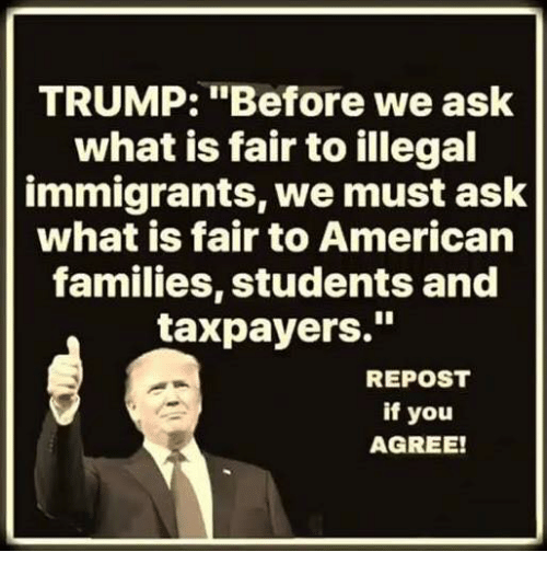 """Memes, American, and Trump: TRUMP: """"Before we ask  what is fair to illegal  immigrants, we must ask  what is fair to American  families, students and  taxpayers.""""  REPOST  if you  AGREE!"""