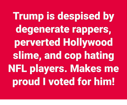 i voted: Trump is despised by  degenerate rappers,  perverted Hollywood  slime, and cop hating  NFL players. Makes me  proud I voted for him