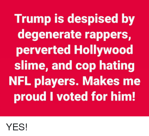 i voted: Trump is despised by  degenerate rappers,  perverted Hollywood  slime, and cop hating  NFL players. Makes me  proud I voted for him! YES!