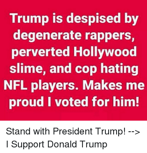 i voted: Trump is despised by  degenerate rappers,  perverted Hollywood  slime, and cop hating  NFL players. Makes me  proud I voted for him! Stand with President Trump! --> I Support Donald Trump