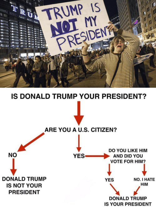 Donald Trump, Trump, and Yes: TRUMP IS  NOT MY  PRESIDEN  IS DONALD TRUMP YOUR PRESIDENT?  ARE YOU A U.S. CITIZEN?  NO  DO YOU LIKE HIM  YES . AND DID YOU  VOTE FOR HIM?  DONALD TRUMP  IS NOT YOUR  PRESIDENT  YES  NO. I HATE  HIM  DONALD TRUMP  IS YOUR PRESIDENT