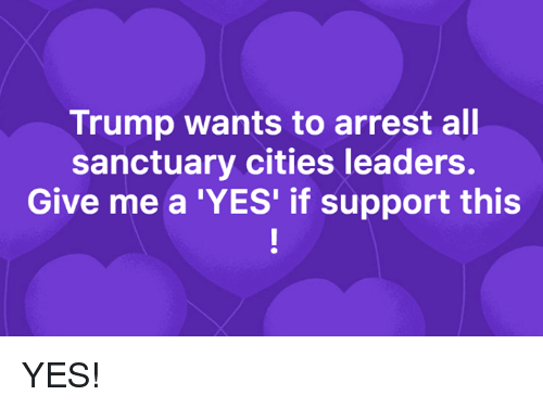 Sanctuary Cities: Trump wants to arrest all  sanctuary cities leaders.  Give me a 'YES' if support this YES!
