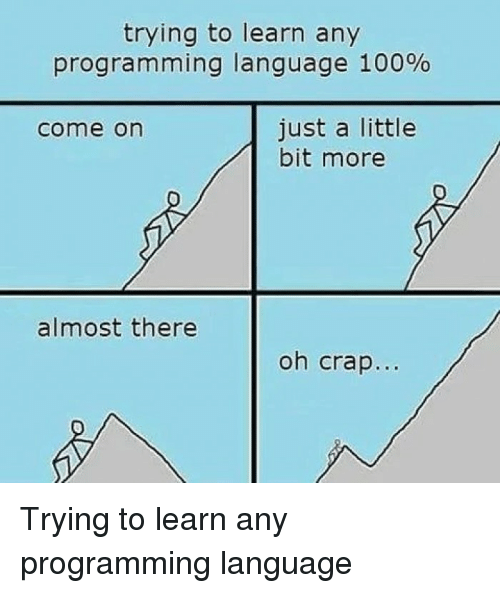 ming: trying to learn any  progra m ming language 100%  just a little  bit more  come on  almost there  oh crap... Trying to learn any programming language