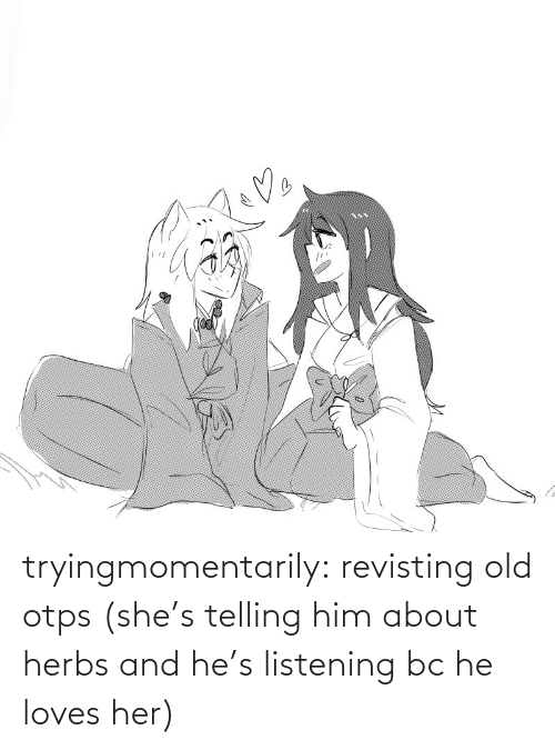 loves: tryingmomentarily: revisting old otps (she's telling him about herbs and he's listening bc he loves her)