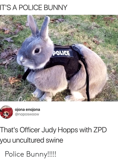 Officer Judy: T'S A POLICE BUNNY  OLICE  PETTY MAYONNAI  ojona enojona  @noposwoow  That's Officer Judy Hopps with ZPD  you uncultured swine Police Bunny!!!!!