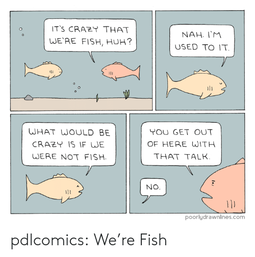 get-out-of-here: T'S CRAZT THAT  WE'RE FISH, HUH?  NAH. IM  USED TO IT  li  WHAT WOULD BE  CRAZY IS IF WJE  WERE NOT FISH  TOU GET OUT  OF HERE WITH  THAT TALK  NO  poorlydrawnlines.com pdlcomics:  We're Fish