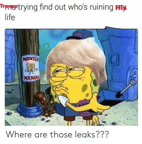 Life, Leaks, and Wanted: Ttrying find out who's ruining ny  life  WANTED  MANIAC Where are those leaks???