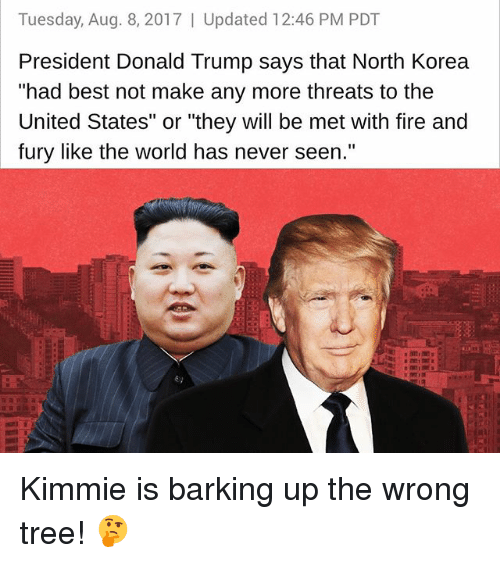 """Donald Trump, Fire, and Memes: Tuesday, Aug. 8, 2017   Updated 12:46 PM PDT  President Donald Trump says that North Korea  """"had best not make any more threats to the  United States"""" or """"they will be met with fire and  fury like the world has never seen.""""  澈艘  6) Kimmie is barking up the wrong tree! 🤔"""