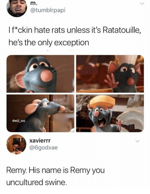 Remy: @tumblrpapi  l f*ckin hate rats unless it's Ratatouille,  he's the only exception  ewill ent  xavierrr  @6godxae  Remy. His name is Remy you  uncultured swine.