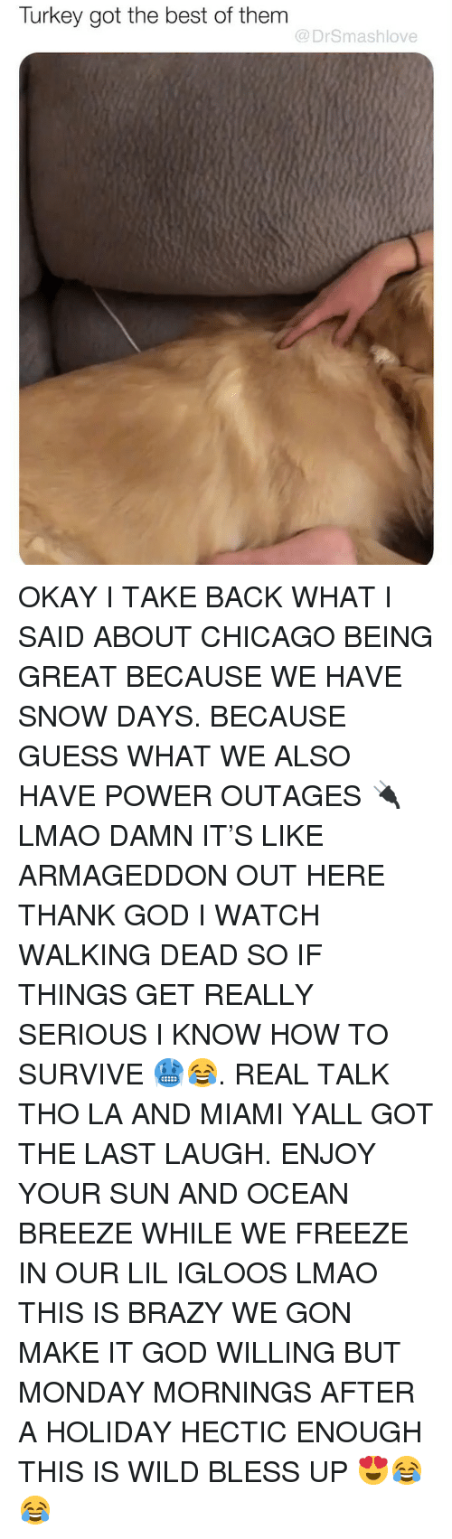 Walking Dead: Turkey got the best of them  @DrSmashlove OKAY I TAKE BACK WHAT I SAID ABOUT CHICAGO BEING GREAT BECAUSE WE HAVE SNOW DAYS. BECAUSE GUESS WHAT WE ALSO HAVE POWER OUTAGES 🔌 LMAO DAMN IT'S LIKE ARMAGEDDON OUT HERE THANK GOD I WATCH WALKING DEAD SO IF THINGS GET REALLY SERIOUS I KNOW HOW TO SURVIVE 🥶😂. REAL TALK THO LA AND MIAMI YALL GOT THE LAST LAUGH. ENJOY YOUR SUN AND OCEAN BREEZE WHILE WE FREEZE IN OUR LIL IGLOOS LMAO THIS IS BRAZY WE GON MAKE IT GOD WILLING BUT MONDAY MORNINGS AFTER A HOLIDAY HECTIC ENOUGH THIS IS WILD BLESS UP 😍😂😂