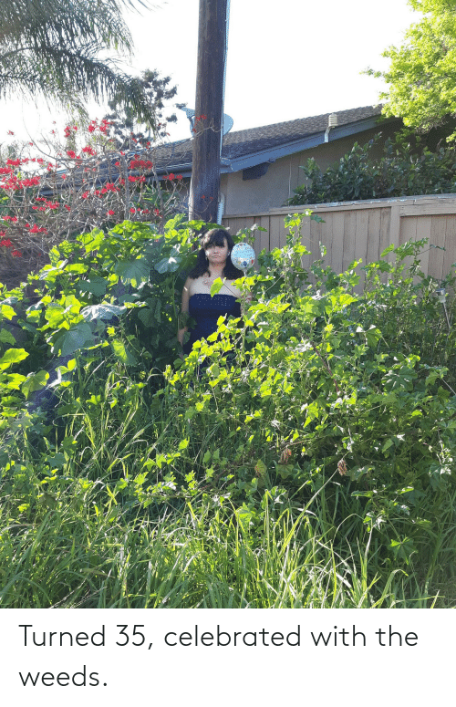 Celebrated: Turned 35, celebrated with the weeds.