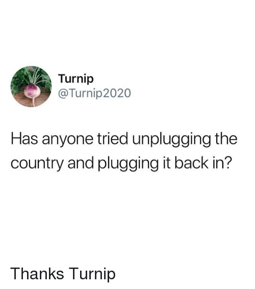 Funny, Back, and Turnip: Turnip  @Turnip2020  Has anyone tried unplugging the  country and plugging it back in? Thanks Turnip