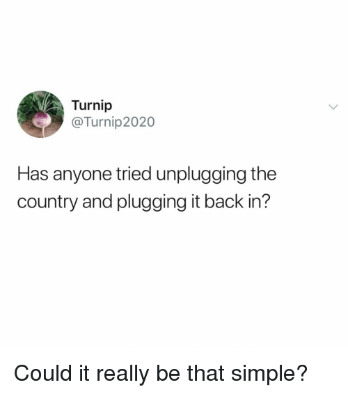 Relatable, Back, and Simple: Turnip  @Turnip2020  Has anyone tried unplugging the  country and plugging it back in? Could it really be that simple?