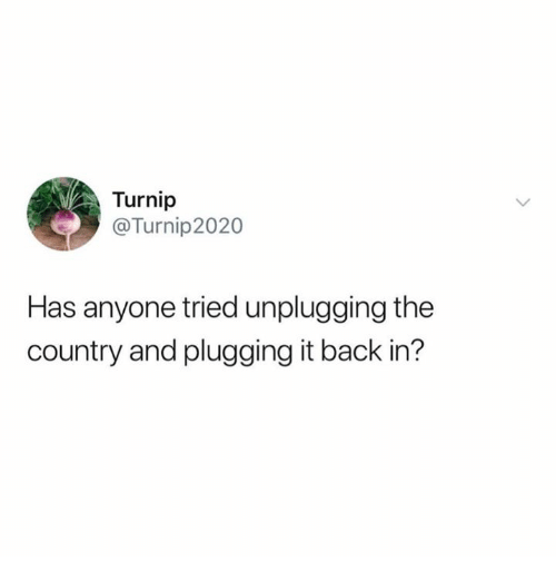 Back, Turnip, and Country: Turnip  @Turnip2020  Has anyone tried unplugging the  country and plugging it back in'?