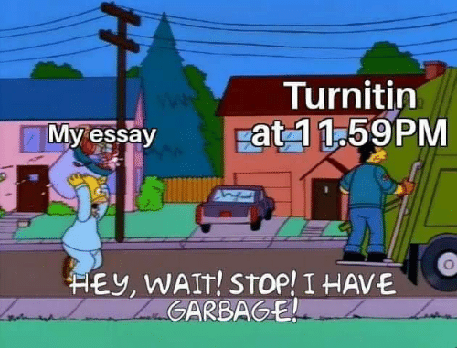 essay: Turnitin  pat 1 1.59PM  My essay  HEY, WAIT! STOP! I HAVE  ZaGARBAGE  H