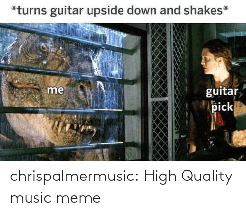 Guitar: *turns guitar upside down and shakes*  me  guitar  pick chrispalmermusic:  High Quality music meme