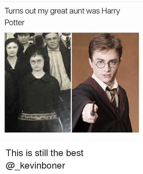 Funny, Harry Potter, and Meme: Turns out my great aunt was Harry  Potter This is still the best @_kevinboner