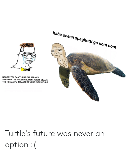 turtles: Turtle's future was never an option :(