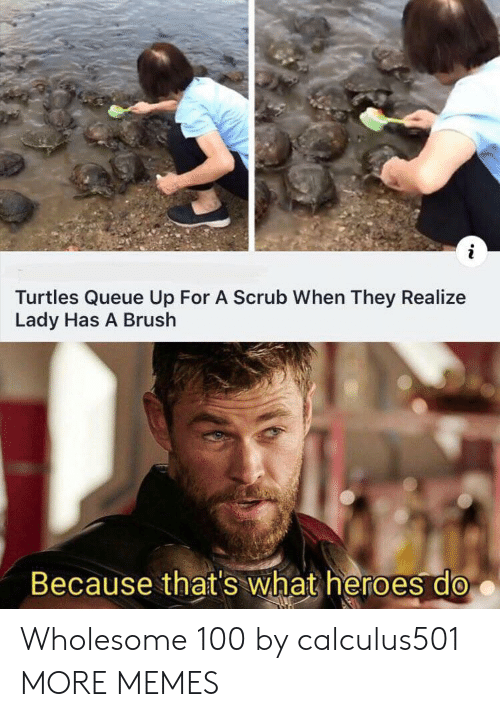 Because Thats: Turtles Queue Up For A Scrub When They Realize  Lady Has A Brush  Because that's what heroes do Wholesome 100 by calculus501 MORE MEMES