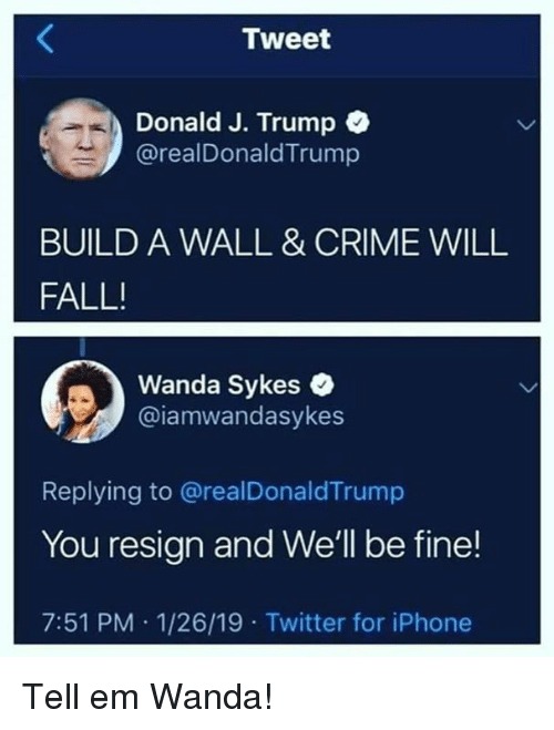 Crime, Fall, and Iphone: Tweet  Donald J. Trump C  @realDonaldTrump  BUILD A WALL & CRIME WILL  FALL!  Wanda Sykes  @iamwandasykes  Replying to @realDonaldTrump  You resign and We'll be fine!  7:51 PM 1/26/19 Twitter for iPhone Tell em Wanda!