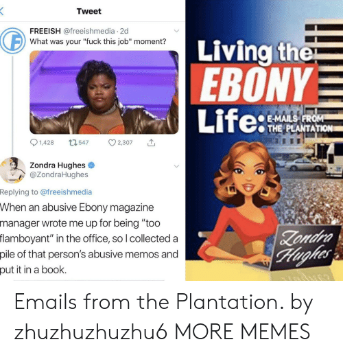 "Dank, Life, and Memes: Tweet  FREEISH @freeishmedia 2d  Living the  EBONY  Life:  What was your ""fuck this job"" moment?  E-MAILS FROM  THE PLANTATION  1,428  L1547  2,307  Zondra Hughes  @ZondraHughes  Replying to @freeishmedia  When an abusive Ebony magazine  manager wrote me up for being ""too  flamboyant"" in the office, so I collected a  Zondra  Hughes  pile of that person's abusive memos and  put it in a book. Emails from the Plantation. by zhuzhuzhuzhu6 MORE MEMES"