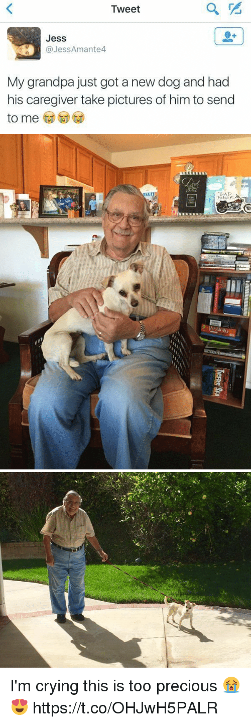 Takeing: Tweet  Jess  @JessAmante4  My grandpa just got a new dog and had  his caregiver take pictures of him to send   PAD I'm crying this is too precious 😭😍 https://t.co/OHJwH5PALR
