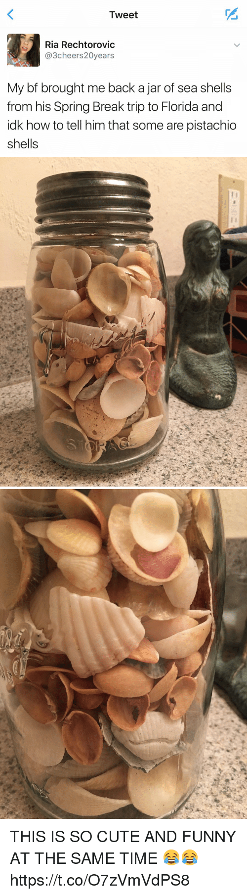 jarred: Tweet  Ria Rechtorovic  3cheers20years  My bf brought me back a jar of sea shells  from his Spring Break trip to Florida and  idk how to tell him that some are pistachio  shells   ソ THIS IS SO CUTE AND FUNNY AT THE SAME TIME 😂😂 https://t.co/O7zVmVdPS8