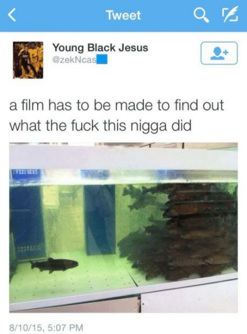 Find Out: Tweet  Young Black Jesus  @zekNcas  a film has to be made to find out  what the fuck this nigga did  8/10/15, 5:07 PM