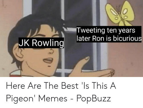 Anime Mercedes Meme: Tweeting ten years  later Ron is bicurious  JK Rowling Here Are The Best 'Is This A Pigeon' Memes - PopBuzz