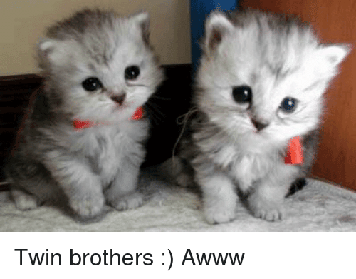 Awww, Brothers, and Twin: Twin brothers :) Awww