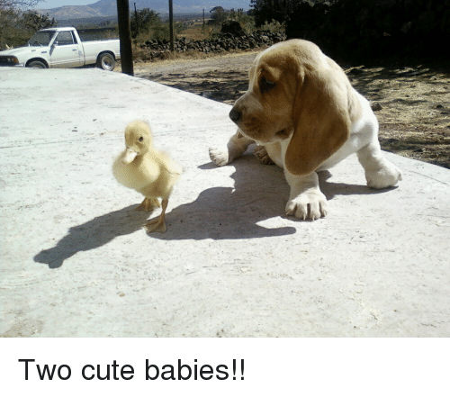 Cute, Babies, and Overload: Two cute babies!!