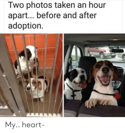 before and after: Two photos taken an hour  apart... before and after  adoption My.. heart-
