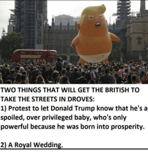 Donald Trump, Memes, and Protest: TWO THINGS THAT WILL GET THE BRITISH TO  TAKE THE STREETS IN DROVES:  1) Protest to let Donald Trump know that he's a  spoiled, over privileged baby, who's only  powerful because he was born into prosperity.  2) A Royal Wedding
