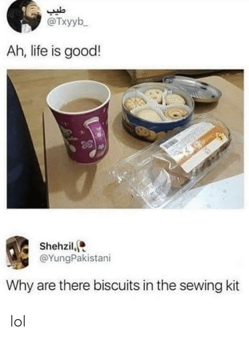 Life, Lol, and Good: @Txyyb  Ah, life is good!  Shehzil,  @YungPakistani  Why are there biscuits in the sewing kit lol