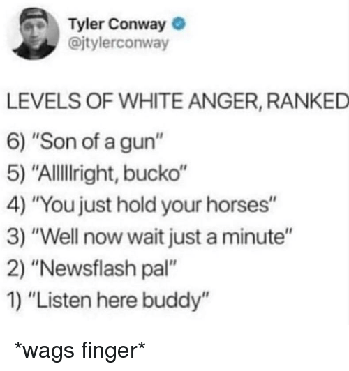 """Conway, Horses, and White: Tyler Conway  @jtylerconway  LEVELS OF WHITE ANGER, RANKED  6) """"Son of a gun""""  5) """"Allillright, bucko""""  4) """"You just hold your horses""""  3) """"Well now wait just a minute""""  2) """"Newsflash pal""""  1) """"Listen here buddy'"""" *wags finger*"""