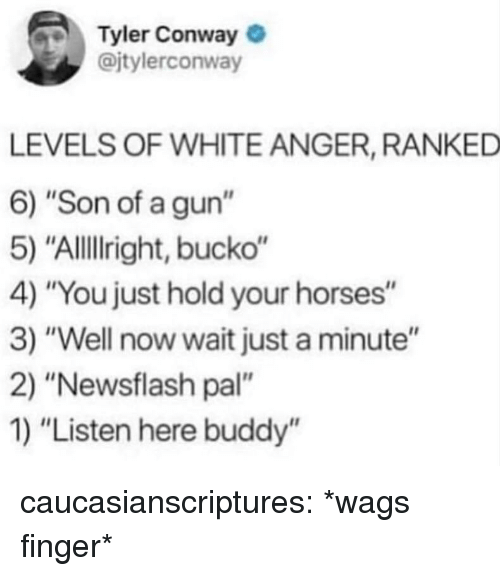 """Conway, Horses, and Tumblr: Tyler Conway  @jtylerconway  LEVELS OF WHITE ANGER, RANKED  6) """"Son of a gun""""  5) """"Allillright, bucko""""  4) """"You just hold your horses""""  3) """"Well now wait just a minute""""  2) """"Newsflash pal""""  1) """"Listen here buddy'"""" caucasianscriptures:  *wags finger*"""
