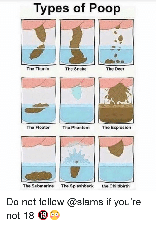 Deer, Memes, and Poop: Types of Poop  The Titanic  The Snake  The Deer  The Floater  The Phantom  The Explosion  The Submarine  The Splashback  the Childbirth Do not follow @slams if you're not 18 🔞😳