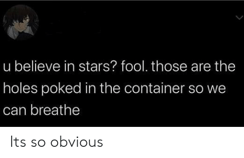 Holes, Stars, and Dank Memes: u believe in stars? fool. those are the  holes poked in the container so we  can breathe Its so obvious