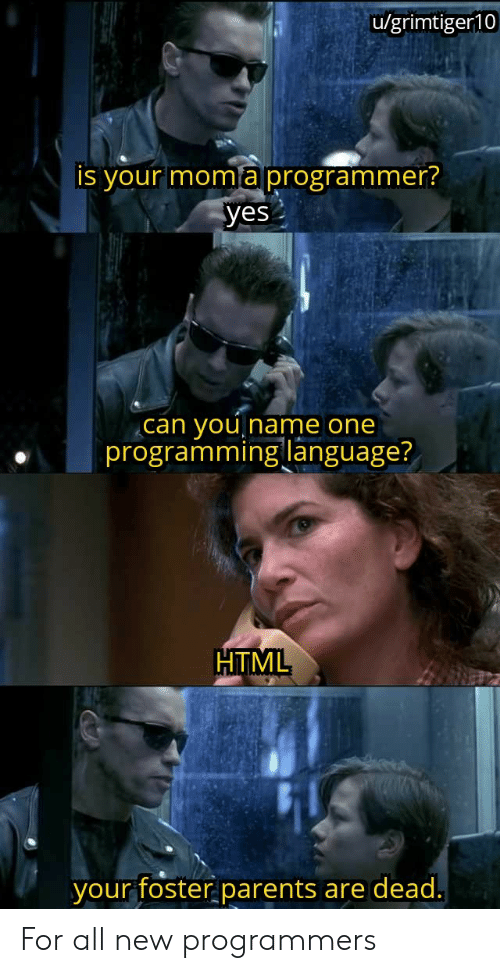programming language: u/grimtiger10  is your moma programmer?  yes  you  programming language?  can  Iname one  HTML  your foster parents  are dead. For all new programmers