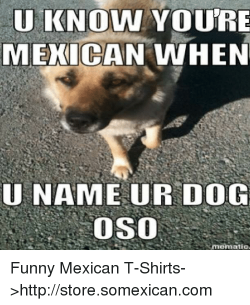 Memes, Mexican, and 🤖: U KNOW YOURE  MEXICAN WHEN  UNA MEUR DOG  OSO  nematic Funny Mexican T-Shirts->http://store.somexican.com