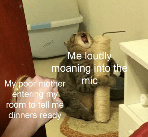 mic: u/osut  Me loudly  moaning into the  mic  My poor mother  entering my  room to tell me  dinners ready