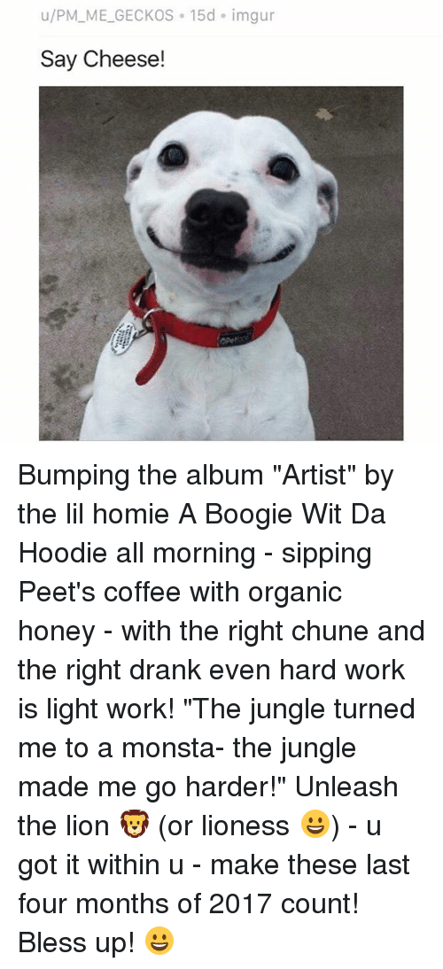 """hardly working: u/PM_ME_GECKOS 15d imgur  Say Cheese! Bumping the album """"Artist"""" by the lil homie A Boogie Wit Da Hoodie all morning - sipping Peet's coffee with organic honey - with the right chune and the right drank even hard work is light work! """"The jungle turned me to a monsta- the jungle made me go harder!"""" Unleash the lion 🦁 (or lioness 😀) - u got it within u - make these last four months of 2017 count! Bless up! 😀"""