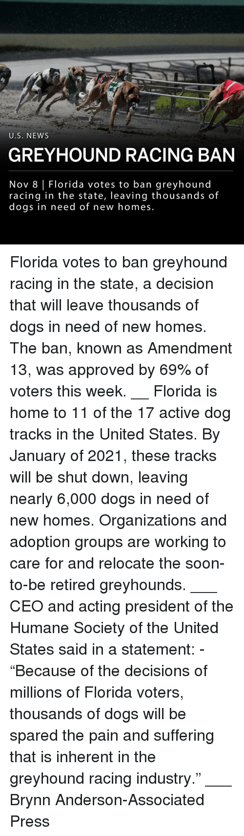 "Dogs, Memes, and News: U.S. NEWS  GREYHOUND RACING BAN  Nov 8 Florida votes to ban greyhound  racing in the state, leaving thousands of  doqs in need of new homes Florida votes to ban greyhound racing in the state, a decision that will leave thousands of dogs in need of new homes. The ban, known as Amendment 13, was approved by 69% of voters this week. __ Florida is home to 11 of the 17 active dog tracks in the United States. By January of 2021, these tracks will be shut down, leaving nearly 6,000 dogs in need of new homes. Organizations and adoption groups are working to care for and relocate the soon-to-be retired greyhounds. ___ CEO and acting president of the Humane Society of the United States said in a statement: - ""Because of the decisions of millions of Florida voters, thousands of dogs will be spared the pain and suffering that is inherent in the greyhound racing industry."" ___ Brynn Anderson-Associated Press"