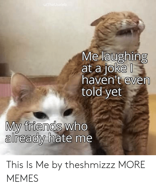 Hate Me: u/TheUseleb  Me laughing  at a joke  haven't even  told yet  My friends who  already hate me This Is Me by theshmizzz MORE MEMES