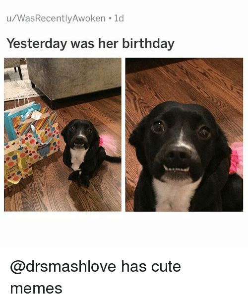 Birthday, Cute, and Funny: u/WasRecently Awoken ld  Yesterday was her birthday @drsmashlove has cute memes