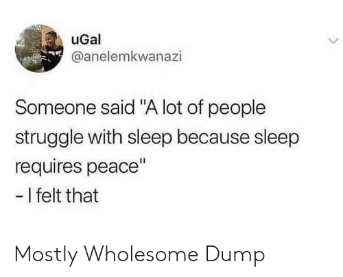 "Struggle, Wholesome, and Peace: uGal  @anelemkwanazi  Someone said ""A lot of people  struggle with sleep because sleep  requires peace""  -I felt that Mostly Wholesome Dump"
