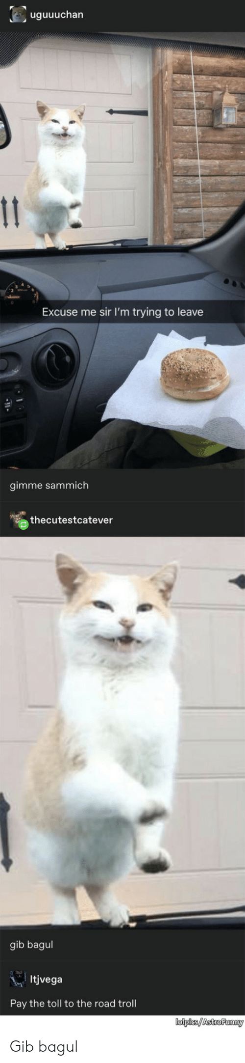 sammich: uguuuchan  11  Excuse me sir I'm trying to leave  gimme sammich  thecutestcatever  gib bagul  Itjvega  Pay the toll to the road troll  lolpies/AstroFunny Gib bagul