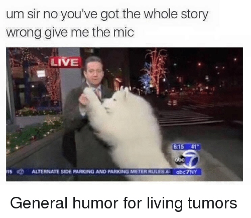 Dank, Live, and Generalization: um sir no you've got the whole story  wrong give me the mic  LIVE  :15 41  15四  ALTERNATE SIDE PARKING AND PARKING METER RULES A.  abc7NY General humor for living tumors