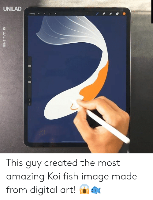 unilad: UNILAD  S  Gallery  O GAL SHIR This guy created the most amazing Koi fish image made from digital art! 😱🐟