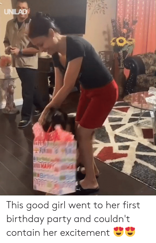excitement: UNILAD This good girl went to her first birthday party and couldn't contain her excitement 😍😍
